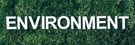 Word Environment on moss, green grass background. Top view. Copy space. Banner. Biophilia concept. Nature backdrop