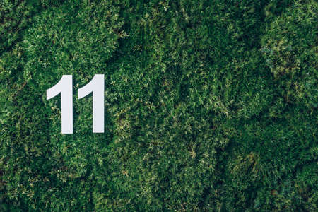 Ecology, zero waste. Green grass, digit eleven. Birthday greeting card with inscription 11. Anniversary concept. Top view. Copy space. White numeral on eco moss background. Numerical digit