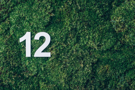 Ecology, zero waste. Green grass, digit twelve. Birthday greeting card with inscription 12. Anniversary concept. Top view. Copy space. White numeral on eco moss background. Numerical digit Stockfoto