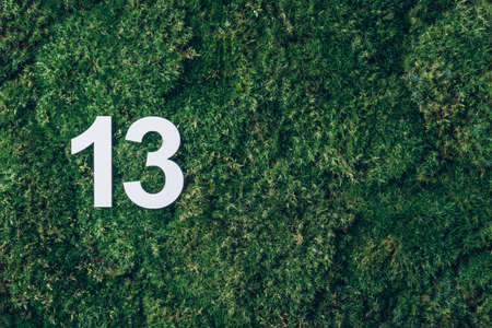 Ecology, zero waste. Green grass, digit thirteen. Birthday greeting card with inscription 13. Anniversary concept. Top view. Copy space. White numeral on eco moss background. Numerical digit