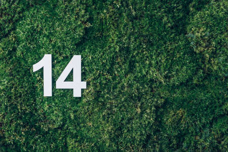 Ecology, zero waste. Green grass, digit fourteen. Birthday greeting card with inscription 14. Anniversary concept. Top view. Copy space. White numeral on eco moss background. Numerical digit Stockfoto