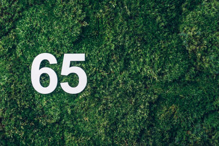 Green grass, digit sixty-five. Birthday greeting card with inscription 65. Anniversary concept. Top view. White numeral on eco moss background. Numerical digit, Celebration event, template, flyer Stockfoto
