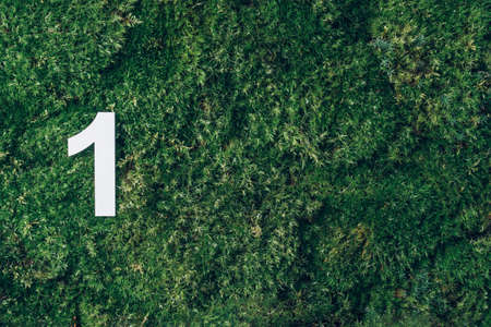 Ecology, zero waste. Green grass and digit one 1. Birthday greeting card. Anniversary concept. Top view. Copy space. White numeral over eco moss background. Numerical digit
