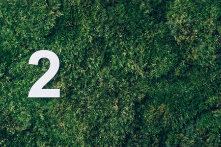 Ecology, zero waste. Green grass and digit two 2. Birthday greeting card. Anniversary concept. Top view. Copy space. White numeral over eco moss background. Numerical digit. Stockfoto
