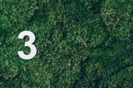 Ecology, zero waste. Green grass and digit three 3. Birthday greeting card. Anniversary concept. Top view. Copy space. White numeral over eco moss background. Numerical digit.