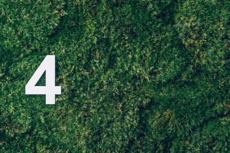 Ecology, zero waste. Green grass and digit four 4. Birthday greeting card. Anniversary concept. Top view. Copy space. White numeral over eco moss background. Numerical digit.