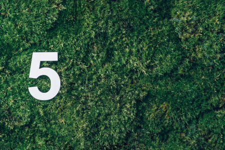 Ecology, zero waste. Green grass and digit five 5. Birthday greeting card. Anniversary concept. Top view. Copy space. White numeral over eco moss background. Numerical digit. Stockfoto
