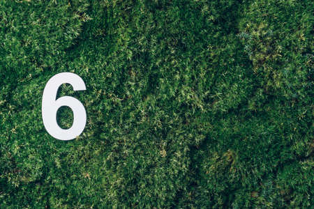 Ecology, zero waste. Green grass and digit six 6. Birthday greeting card. Anniversary concept. Top view. Copy space. White numeral over eco moss background. Numerical digit.