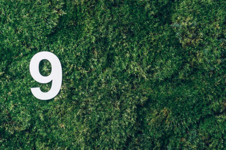 Ecology, zero waste. Green grass and digit nine 9. Birthday greeting card. Anniversary concept. Top view. Copy space. White numeral over eco moss background. Numerical digit.