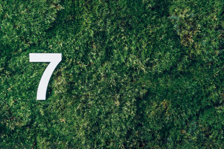 Ecology, zero waste. Green grass and digit seven 7. Birthday greeting card. Anniversary concept. Top view. Copy space. White numeral over eco moss background. Numerical digit.