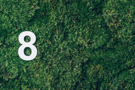 8 March. Happy Womens Day. Ecology, zero waste. Green grass and digit eight 8. Birthday greeting card. Anniversary concept. Top view. White numeral over eco moss background. Numerical digit. 版權商用圖片