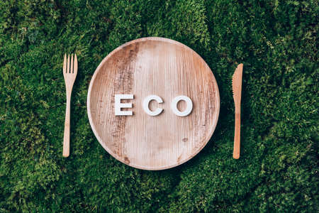 Wooden disposable tableware from natural materials with word ECO, wooden spoon, fork on green moss background. Eco-friendly sustainable lifestyle. Zero waste picnic
