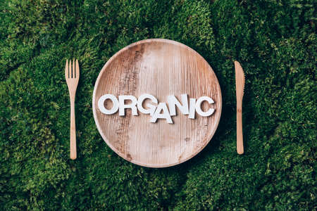 Wooden disposable tableware from natural materials with word ORGANIC, wooden spoon, fork on green moss background. Eco-friendly sustainable lifestyle. Zero waste picnic. Clean eating healthy cooking