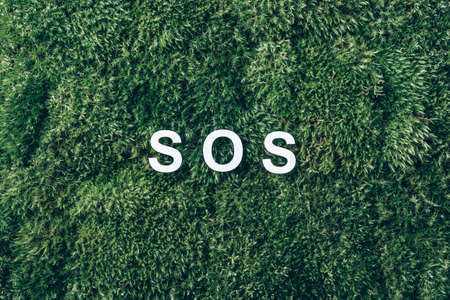 Word SOS on moss, green grass background. Top view. Copy space. Banner. Biophilia concept. Natural backdrop. Environmental pollution, save the nature concept