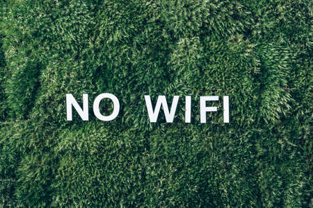 Word WIFI on moss, green grass background. Top view. Copy space. Banner. Biophilia design. Nature backdrop. Mental reset, digital detox. Unplugging, Offline, mindfulness concept