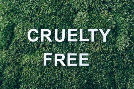 Inscription Cruelty Free on moss, green grass background. Top view. Copy space. Banner. Biophilia concept. Nature backdrop