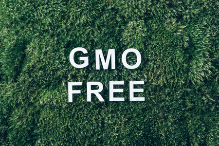 Inscription GMO FREE on moss, green grass background. Top view. Copy space. Banner. Biophilia concept. Nature backdrop. Genetically modified organism, GMO free. Healthy diet concept