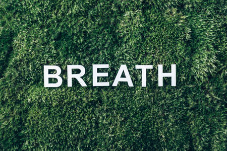 Word Breath on moss, green grass background. Top view. Copy space. Banner. Biophilia trend. Nature backdrop. Peace of Mind, health concept. Take a deep breath. Health, wellness concept 版權商用圖片