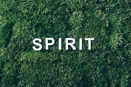 Word Spirit on moss, green grass background. Top view. Copy space. Banner. Biophilia trend. Nature backdrop. Body, mind and spirit concept. Body, mind, spirit and soul concept 版權商用圖片