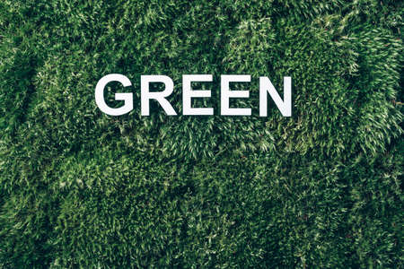 Inscription Green on moss, green grass background. Top view. Copy space. Banner. Biophilia concept. Nature backdrop