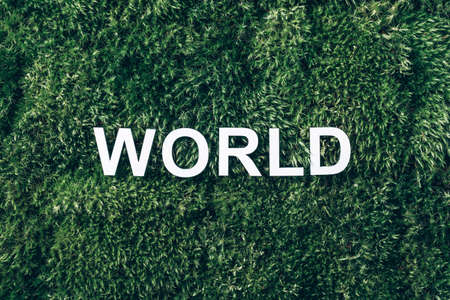 Word World on moss, green grass background. Top view. Copy space. Banner. Biophilia concept. Nature backdrop