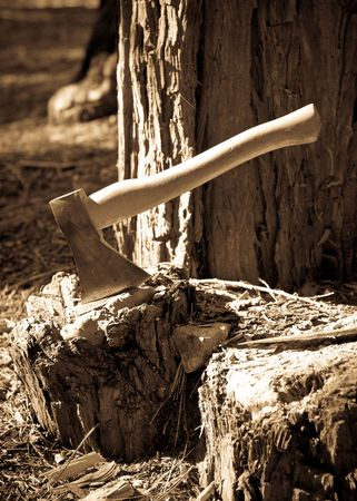 outdoorsman: Cutting Wood Conceptual Image