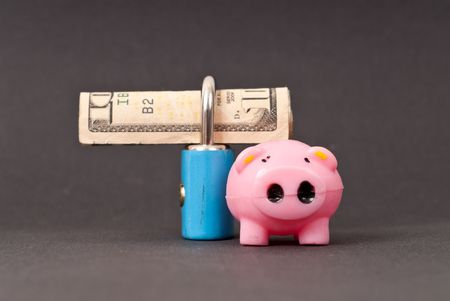 Securing Your Money ( Financial Bacon Metaphor ) photo