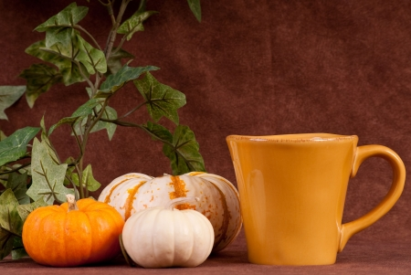 hollows: Having a Pumpkin Flavored Holiday Drink Stock Photo