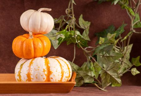 hollows: Mini Pumkin Stacked On Top of Each Other