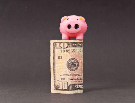 Little Pig on Ten Dollar Bill  photo