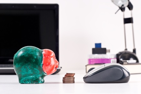 Online Vs. Personal Financial Security Stock Photo - 8446329