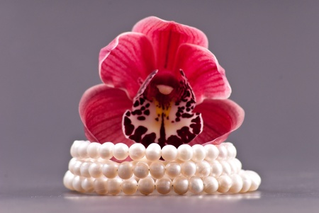 freshwater pearl: 3 Row Freshwater Pearl Bracelet Gift with Orchid Stock Photo