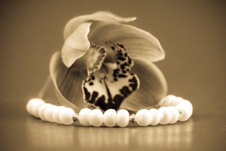 freshwater pearl: Giving Her a Pearl Necklace Stock Photo