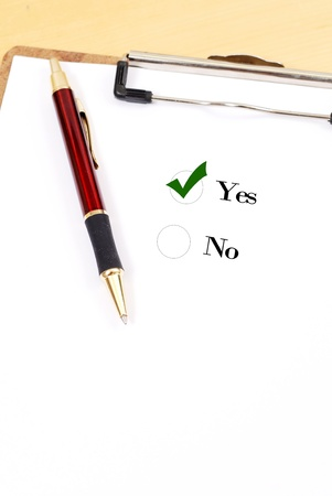 idealism: Voting Yes