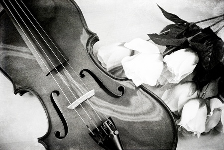 Violin and Roses in Black and White Grunge photo