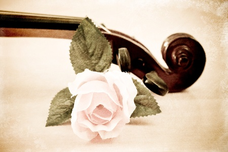 Rose with Violin Head Stock in Grunge photo