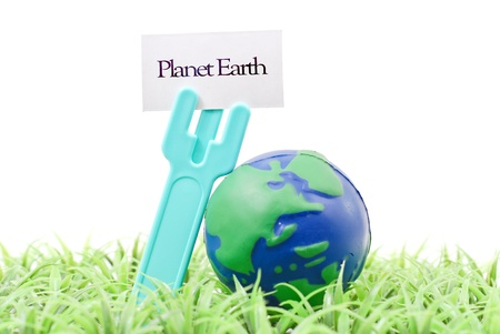 Earth Shaped Ball on Grass with Plant Tag
