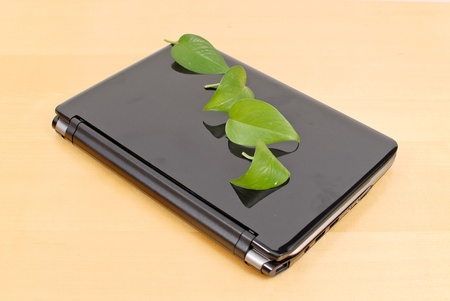 Earth Friendly Laptops Stock Photo - 9991211