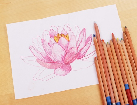Drawing a Pretty Lilly Stock Photo - 10290675