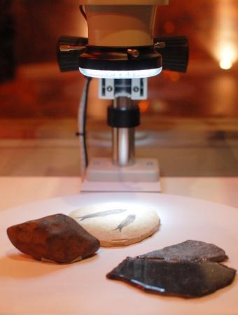 high powered: High Powered Microscope Stock Photo