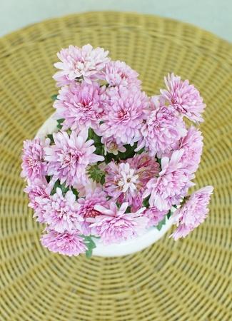 fragrant scents: Peony Flowers  Stock Photo