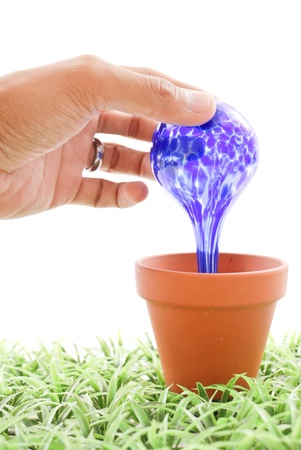 Hand Placing Water Globe in Plant Pot