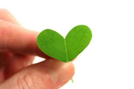 fingers holding a clover heart on a white background Stock Photo - 2761786