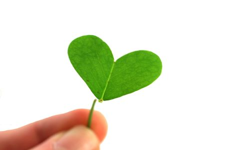 march 17: fingers holding a clover heart on a white background