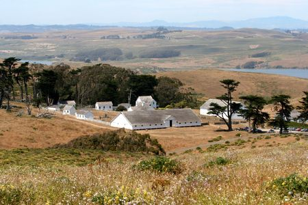 A view of white farm buildings surrounded by pastureland
