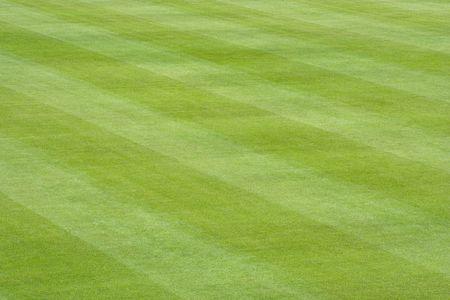 cut grass: The freshly cut striped grass of a baseball field.