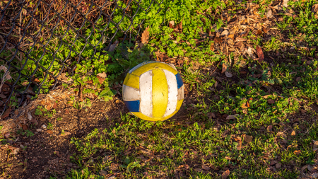 White, yellow and blue soccer ball resting on the ground at a park in the golden hour sun Imagens