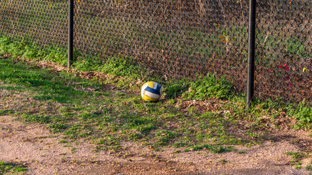 White, yellow and blue soccer ball resting on the ground at a park in the golden hour sun.