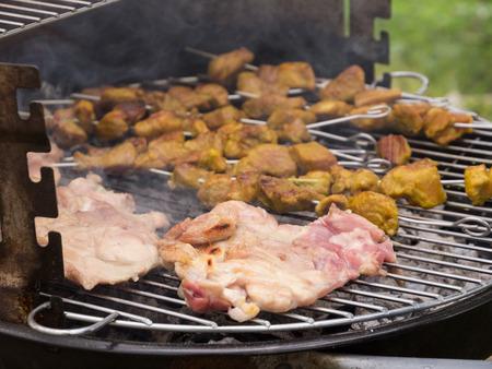 barbecue of chicken and brochettes ok pork