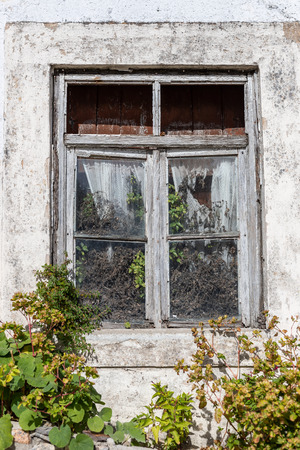 old window of abandoned house in ruins with vegetation invading it Banco de Imagens